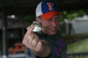 fish bait Merry