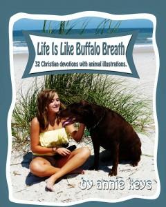 Buffalo Breath COVER